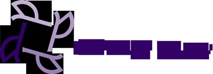 The Diversity Company Logo